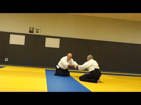 Aikido G Beets BF part3