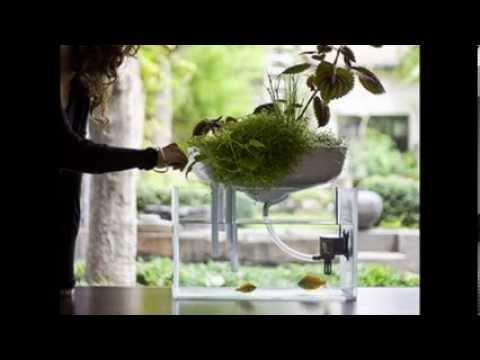 Download Youtube To Mp3: Schwimmender Mini Garten Dient Als, Möbel