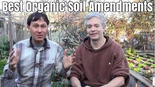Best Organic Soil Amendments to SuperCharge Plant Growth