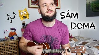 POKÁČ   SÁM DOMA (ukulele Minisong)