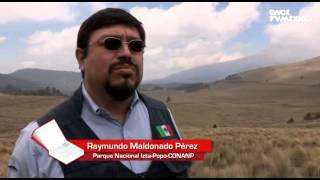 El libro rojo, Especies Amenazadas - Teporingo, el conejo de los volcanes