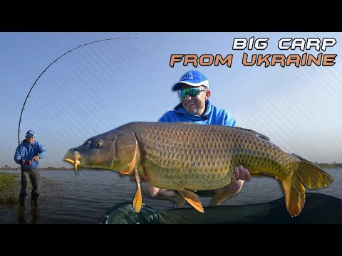 Adventure on wildlife. Series 30 Catching carp at a distance of 120+ methodic snap-ins