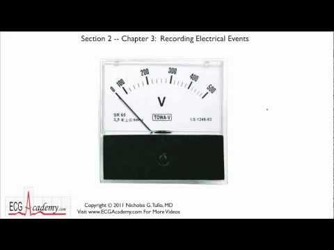Interpretacja EKG - Rejestracja Zajwisk Elektrycznych, 2-3