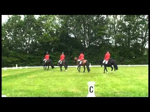 Selectiewedstrijd Brabantse kampioenschappen 2010 - Saxe Gotha 4 tal ABC Cat L