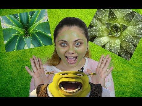 Отзывы Успокаивающая маска с алоэ вера Vichy Soothing Aloe Vera Mask