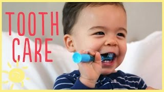 TIPS | TODDLER TOOTH CARE w/ pediatric dentist