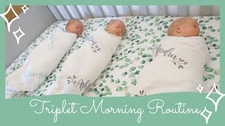 Newborn Triplets' Morning Routine