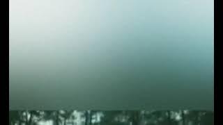 TIGER BOY EPISODE 2 | ALWI ASSEGAF | FILM INDONESIA