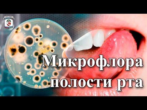 Mi az emberi körömféreg szaporodása