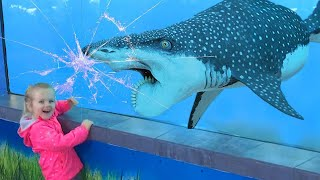 Funny Videos Animals - Dolphin and baby 2020 - Try not to laugh