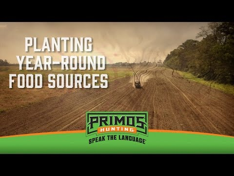 Planting Year-Round Food Sources for Deer video thumbnail