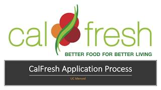 UCM CalFresh Application Process