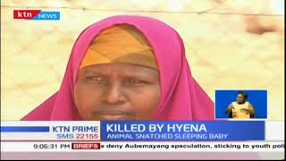 Three month old baby's life cut short after hyena attacked and killed her