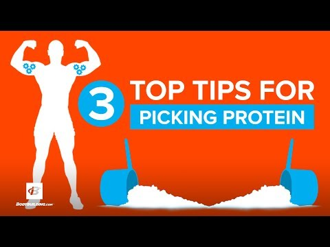 3 Top Tips for Picking Whey Protein | Doug Kalman Ph.D.