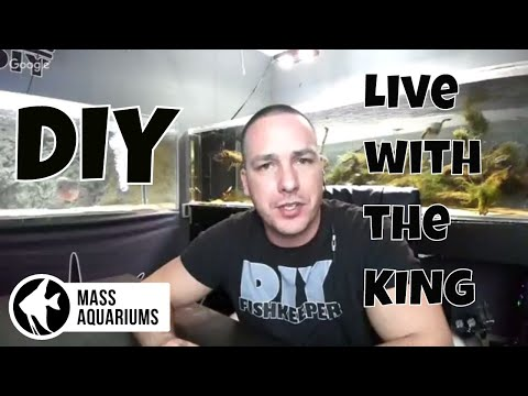 LIVE with The king of DIY: Q&A with Joey