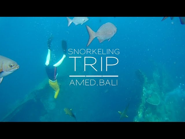 BALI SNORKELING TRIP - Amed & Tulamben