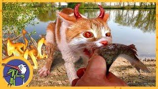 Картинка кот идет на рыбалку