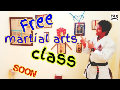 Free online martial art classes | free karate classes on youtube | live ...