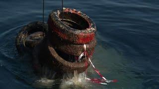 Au large de Vallauris, des milliers de pneus remontent du fond