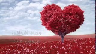 تحميل و مشاهدة A'amir Muneeb - Mona Einy | منى عيني - عامر منيب MP3