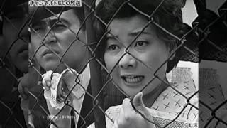 川地民夫-来歴・人物