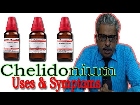 Chelidonium - Symptoms and Uses in Homeopathy by Dr P.S. Tiwari