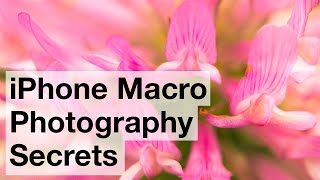 iPhone Macro Photography Secrets – iPhone Landscape Mastery