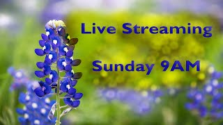 Live Streaming – 9AM Sunday