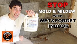 Wet & Forget Indoor: Discover a New Way to Stop Mold & Mildew -- by Home Repair Tutor