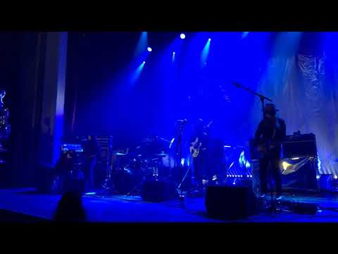 The Dandy Warhols - Forever (live in Belgium 2019)