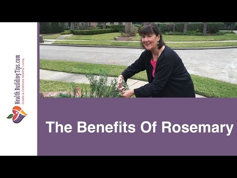 Video The Benefits Of Rosemary