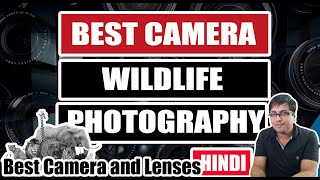 Top 5 Cameras for Wildlife Photography Hindi | Best Cameras for Nature and Wildlife Photography 2020