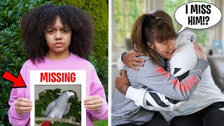 WE LOST OUR PET PARROT!! (Parrot Flew Away!) 💔 *Emotional*