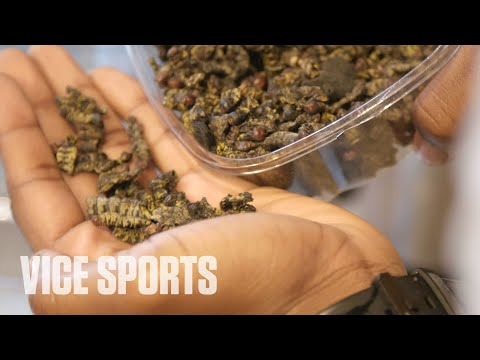 [VICE SPORTS]  Eating Caterpillars for Protein with a Pro Football Player
