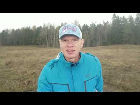 Земельный участок в Ленинградской области Ломоносовский район за деревней Лопухинка