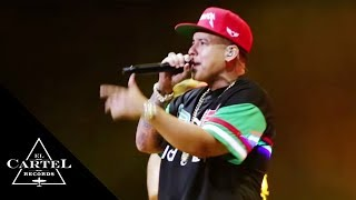 Vaiven En Vivo - Daddy Yankee (Video)