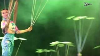 Video : China : Chinese acrobatics sample - video