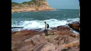 Video : China : Wild Hong Kong 香港