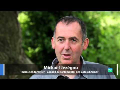 Vidéo de Mickaël Jézégou
