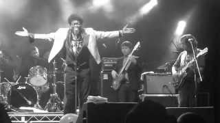Charles Bradley - Lovin' You, Baby (Live) - Regina Folk Festival