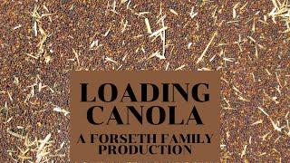 Loading Canola thumbnail