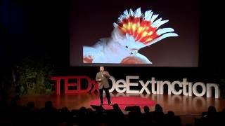 Endangered Studio: Joel Sartore At TEDxDeExtinction