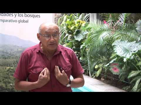 Diálogos de Tenencia, Perú: Aldo Ramírez