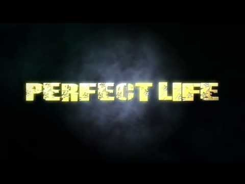 PERFECT LIFE BY BOZE AND THE GOLDEN BEES