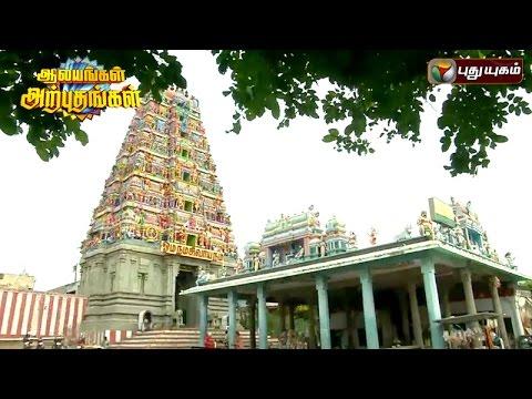 Thanthondreeswarar-Temple-Belur-Salem-Aalayangal-Arputhangal-01-08-2016-Puthuyugam-TV