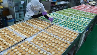 SNS에서 핫했던! 그 마카롱~ 대량생산 현장 (Amazing and exciting! Mass production of macarons / Korean food factory)