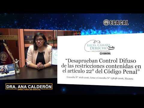 Programa 53 - Desaprueban control difuso sobre restricciones contenidas en el Art. 22 del C.P.