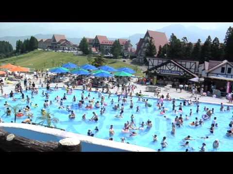 上越国際プレイランド:プール