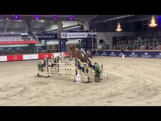 Sire Young stallion award winner Ermitage Kalone