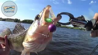 Рыбалка в подмосковье с катера